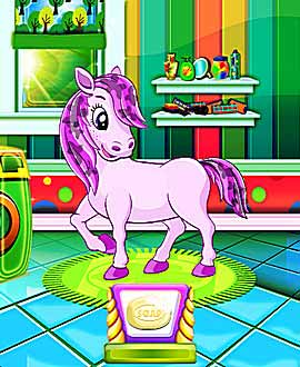 Basic Care for your Pony